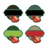 Conjunto de escrituras de la etiqueta de la fruta Fotografía de archivo libre de regalías