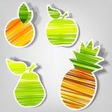 Conjunto de etiquetas engomadas del vector. fruta fresca Foto de archivo