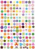 Conjunto de flores Fotos de archivo libres de regalías