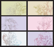 Conjunto de flores Foto de archivo libre de regalías