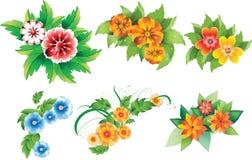Conjunto de flores coloreadas Foto de archivo