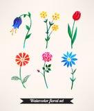 Conjunto de flores de la acuarela Foto de archivo libre de regalías