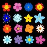 Conjunto de flores y de elementos de la flor Imagen de archivo