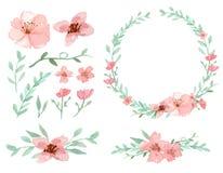 Conjunto de flores y de hojas Stock de ilustración
