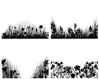 Conjunto de fondos de la hierba Fotografía de archivo