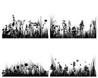 Conjunto de fondos de la hierba Fotografía de archivo libre de regalías
