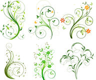 Conjunto de fondos florales Fotografía de archivo libre de regalías