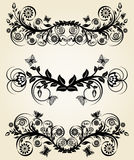 Conjunto de fronteras florales del negro de la vendimia Foto de archivo