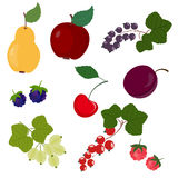 Conjunto de frutas Foto de archivo libre de regalías