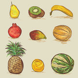 Conjunto de frutas Fotografía de archivo