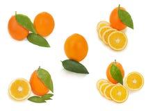 Conjunto de frutas anaranjadas maduras frescas con el isolat de las hojas del corte y del verde Fotografía de archivo libre de regalías