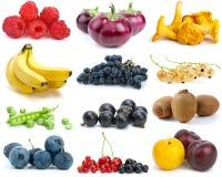 Conjunto de frutas, de bayas, de vehículos y de setas Imagen de archivo