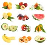 Conjunto de frutas de la frescura fotos de archivo