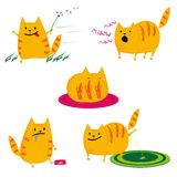 Conjunto de gatos libre illustration