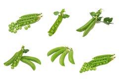 Conjunto de guisantes verdes. Aislado. Imagenes de archivo