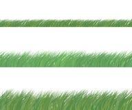 Conjunto de hierba verde Imagenes de archivo