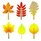 Conjunto de hojas de otoño Fotos de archivo