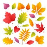 Conjunto de hojas de otoño coloridas Foto de archivo libre de regalías