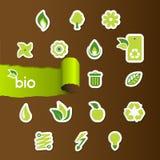 Conjunto de iconos de la ecología Fotografía de archivo libre de regalías