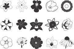 Conjunto de iconos de la flor Fotografía de archivo