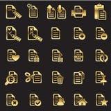 Conjunto de iconos de los ficheros Imagen de archivo libre de regalías