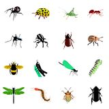 Conjunto de insectos Fotografía de archivo libre de regalías
