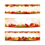 Conjunto de la bandera colorida de las hojas de otoño