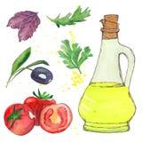 Conjunto de la ensalada Botella del aceite de oliva, hoja de la albahaca, aceituna, arugula, perejil, tomate Imagen de archivo