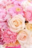 Conjunto de la flor Foto de archivo