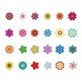Conjunto de la flor Fotografía de archivo libre de regalías
