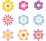 Conjunto de la flor Fotos de archivo libres de regalías