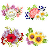 Conjunto de la flor Imágenes de archivo libres de regalías