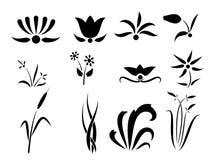 Conjunto de la flor y del ornamento de las siluetas de las plantas stock de ilustración