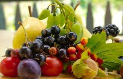 Conjunto de la fruta Imagenes de archivo