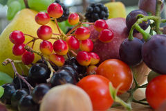 Conjunto de la fruta Imagen de archivo libre de regalías