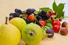Conjunto de la fruta Fotografía de archivo libre de regalías