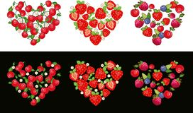 Conjunto de la fruta del corazón ilustración del vector