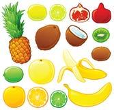 Conjunto de la fruta tropical Fotografía de archivo libre de regalías