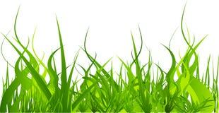 conjunto de la hierba Foto de archivo