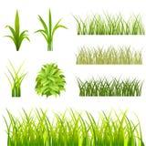 Conjunto de la hierba Imágenes de archivo libres de regalías