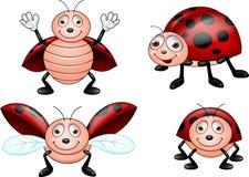 Conjunto de la historieta del Ladybug Foto de archivo libre de regalías