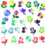 Conjunto de la insignia de las flores Imagen de archivo