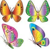 Conjunto de la mariposa. Imagen de archivo