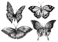 Conjunto de la mariposa stock de ilustración