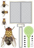 Conjunto de la mosca doméstica Imagenes de archivo