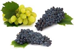 Conjunto de la uva verde y oscura fresca en blanco foto de archivo