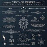 Conjunto de la vendimia del vector Elementos y RRPP caligráficos de la decoración de la página Imagen de archivo libre de regalías