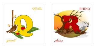 Conjunto de las cartas del alfabeto, Q-R Imagen de archivo