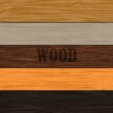 Conjunto de las texturas de madera Foto de archivo libre de regalías