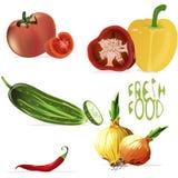 Conjunto de las verduras frescas Imagen de archivo libre de regalías